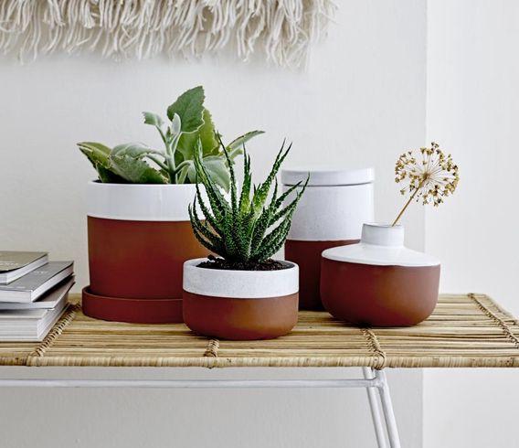 Blumentöpfe & Pflanzenbehälter